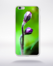 Coque bourgeons de hepatica commune compatible iphone 6 transparent